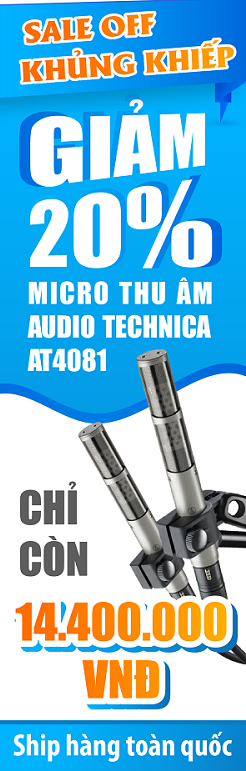 Micro Audio Technica AT4081